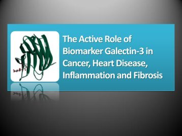 The Active Role of Biomarker Galectin-3 in Cancer, Heart Disease ...