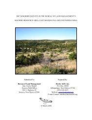 2007 Songbird Surveys in the Bureau of Land ... - Hawks Aloft Inc.