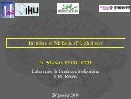 S.Feuillette 280110 - CHU de Rouen