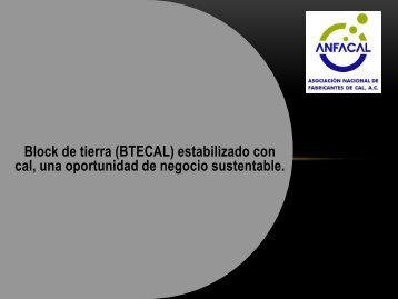 Diapositiva 1 - Anfacal