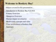 Welcome to Rookery Bay! - Estuaries NOAA