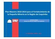 Plan Maestro 2010-2014 para el Fortalecimiento de la ... - Sonami