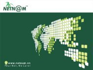 NetNam IPv6 services