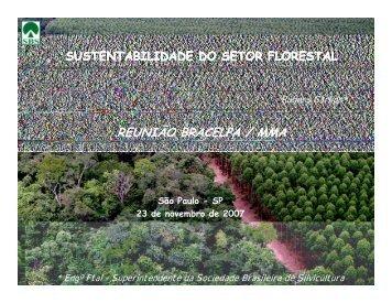 REUNIÃO BRACELPA / MMA - Sociedade Brasileira de Silvicultura