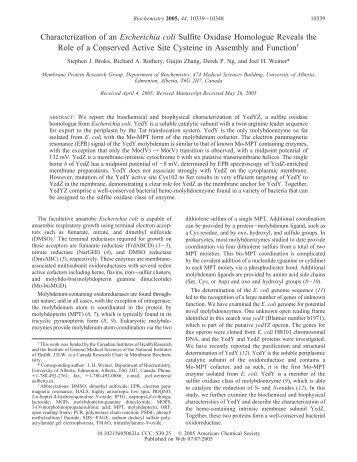 Characterization of an Escherichia coli Sulfite Oxidase Homologue ...