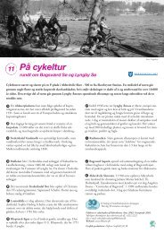 På cykeltur - Lyngby Taarbæk Kommune
