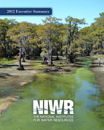 2012 Executive Summary - NJ Water Resources Research Institute