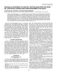 Monticellia ophisterni n. sp. (Cestoda: Monticelliidae) from the ...