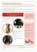 Antioxidant Products - Page 7