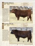 here - WRAZ Red Angus - Page 5
