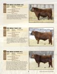 here - WRAZ Red Angus - Page 7
