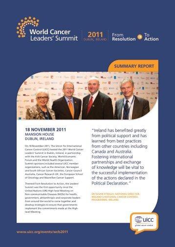 Summary Report - Breast Health Global Initiative