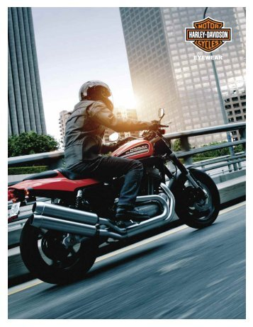 harley davidson 2011 collection