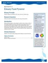 Estuary Food Pyramid Teacher Guide - Estuaries NOAA