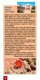 SULLA VIA DELLA CROCE - casasantamaria.it - Page 2