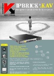 Product Sheet IPBrick.KAV