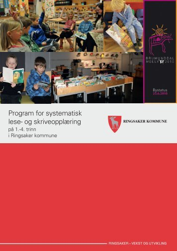 Program for systematisk lese - Ringsaker kommune