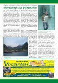 GemeindeNEWS - Haselsdorf - Tobelbad, die Homepage der VP ... - Seite 4
