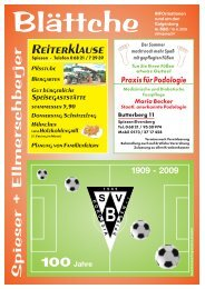 r. 528 vom 18.06.2009 - Eschl - Druck