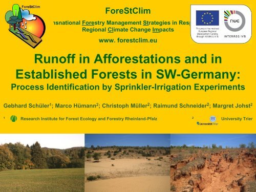 Runoff in Afforestations and in Established Forests in ... - ForeStClim