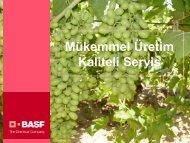 Harika Üzüm Projesi - BASF Türkiye Bitki Koruma Bölümü