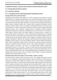 III. Základné informácie o súčasnom stave životného ... - Beluša