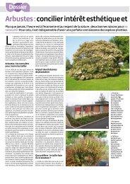 Arbustes : concilier intérêt esthétique et juste coût - Caue 77