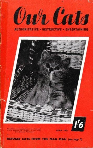 Untitled - Kyina & Talisker Cats Breeders of Russian Blues in ...