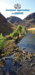 Investment opportunities in Lesotho - Lesotho National ...