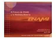 El Futuro de ENAMI y la Mediana Minería