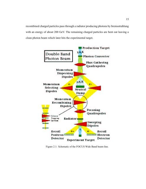 charm decays with photons in the final state and trigger counter ...
