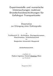 Experimentelle und numerische Untersuchungen reaktiver ...