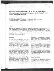 Macrobothridium rhynchobati n. g., n. sp. from the elasmobranch ...