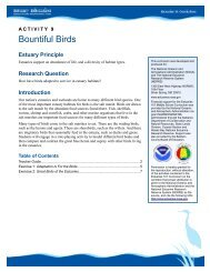 Bountiful Birds Teacher Guide - Estuaries NOAA