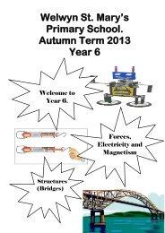 Welwyn St. Mary's Primary School. Autumn Term 2013 Year 6
