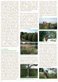 Mehr als nur Tulpen! - GartenKunstKreis - Page 4