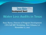 Water Loss Audits in Texas