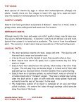 Insects - Lakeside Nature Center - Page 2