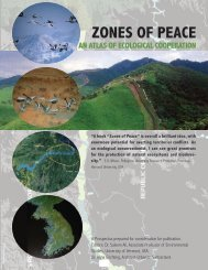 ZONES OF PEACE - America Reloaded