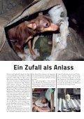Ausnahmezustand im Linzer Tierheim! - Tierheim Linz - Seite 4
