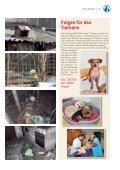 Ausnahmezustand im Linzer Tierheim! - Tierheim Linz - Seite 5