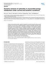 Dynamic analysis of optimality in myocardial energy metabolism ...