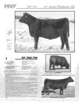 13thAnnual Production Sale - AngusWebmail.ca - Page 4