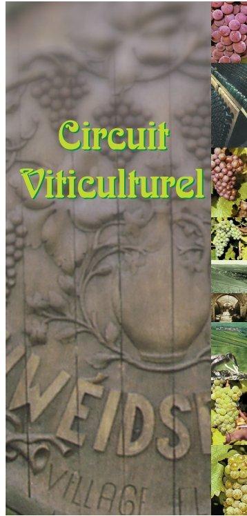 Le Circuit Viticulturel