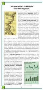 Le Circuit Viticulturel - Page 4