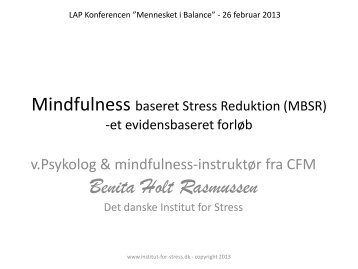 Mindfulness Og Psykisk Lidelse. Af Benita Holt Rasmussen - LAP