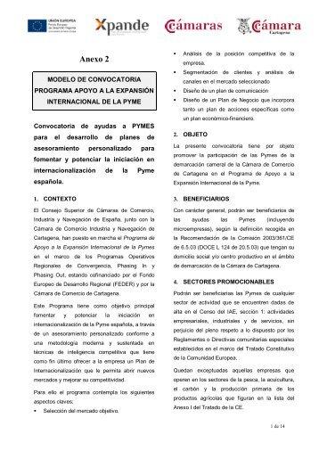 Modelo de Convocatoria Programa Apoyo a la Expansión ...