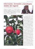 Boletín Informativo nº 17 (marzo de 2005) - Page 6
