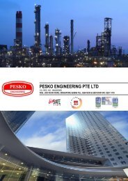 PESKO Company Profile - PESKO Engineering Pte Ltd Singapore