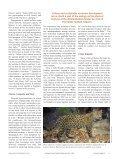 Sonoran Desert Network Weavers - Page 6